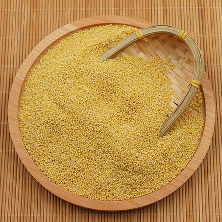 农家自产黄小米250g