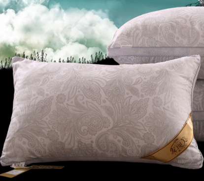 抗菌防螨羽丝绒枕头一只